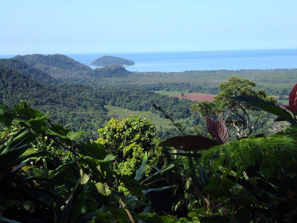 Daintree Rainforest Cairns